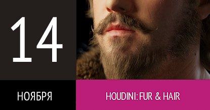 Houdini: FUR & HAIR